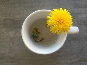 Blomster fra Sebastian 🌸