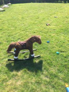 En av to hester i hagen 🐴