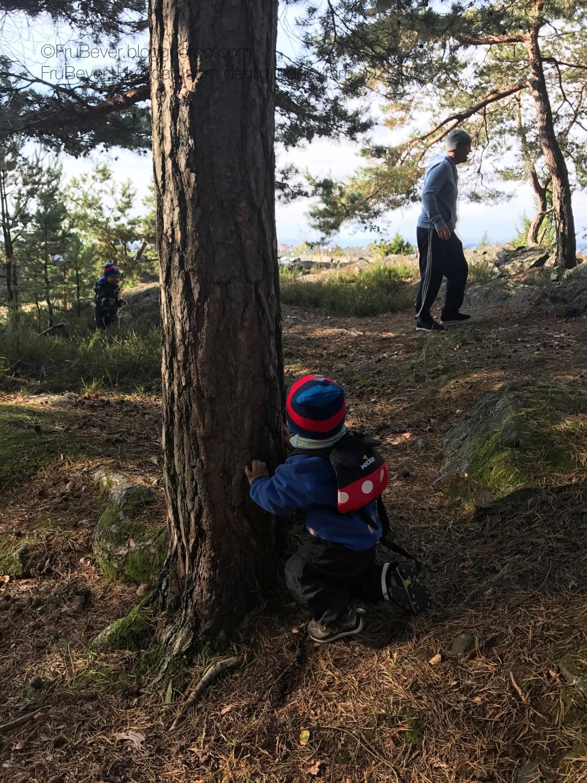 Høstferien - aktiviteter å gjøre med barn