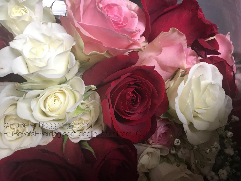 I tradisjon tro fikk jeg en flott bukett med blomster av Robert! Jeg er heldig 💐