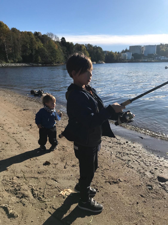 Prøver fiskelykken på stranden en oktober dag - ble dårlig med 🐠 gitt!