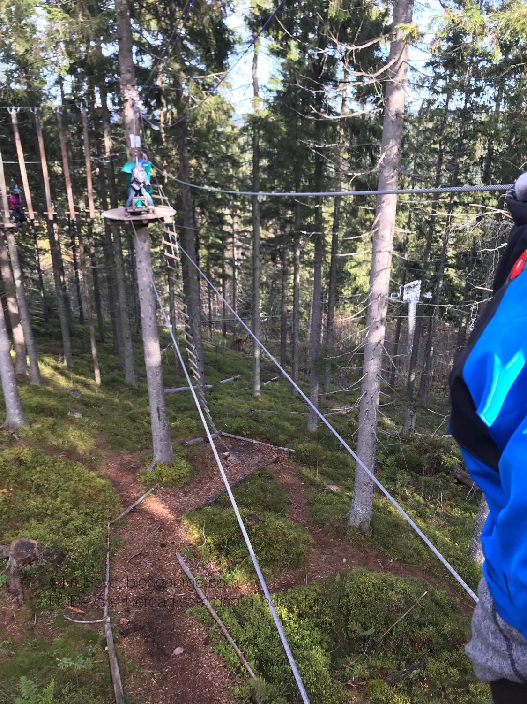 Klare for utfordringer i høyt og lavt klatrepark @Tryvann kjelke 10 meter over bakken !!