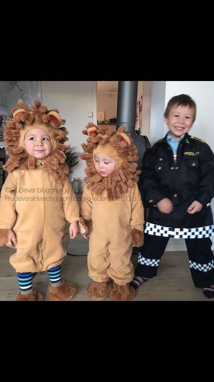Dragen, Løvene og Politimannen @FruBeversHverdag!