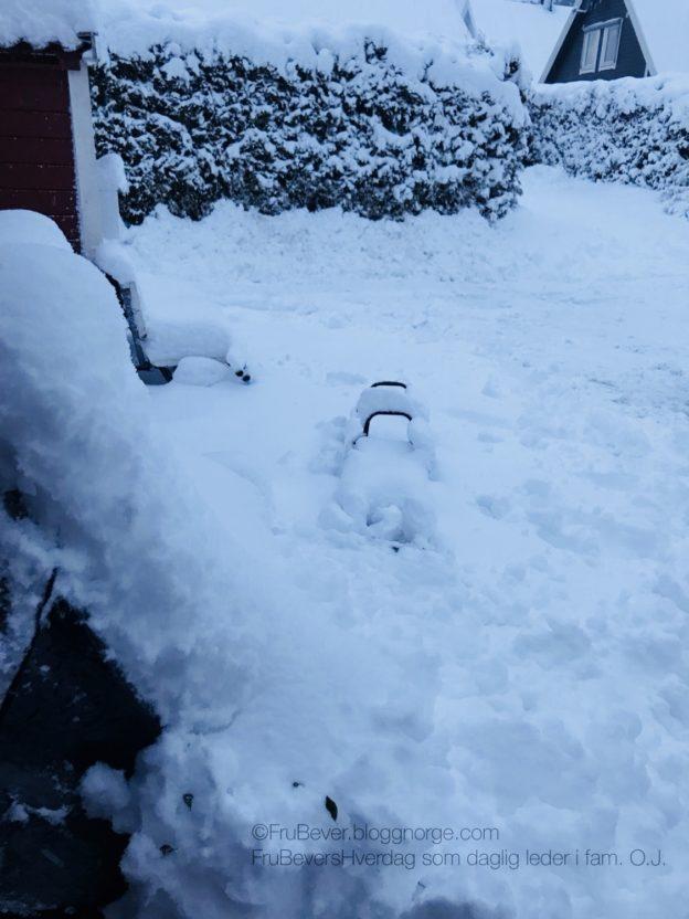 Lykke er ... masse snø ❄️☃️ Frubevershverdag med barn