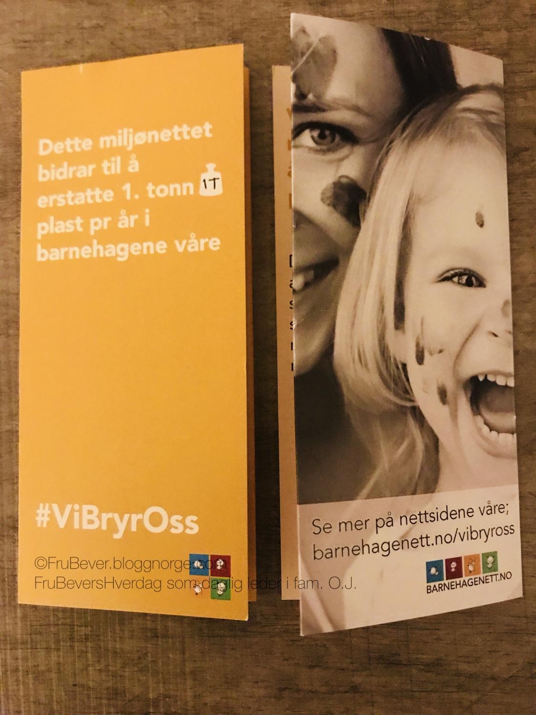 FruBeversHverdag barnehagen #vibryross om miljøet - miljønett