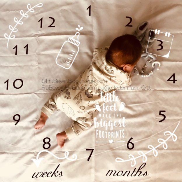 Oskar bittelillebror nyfødt props til fotografering