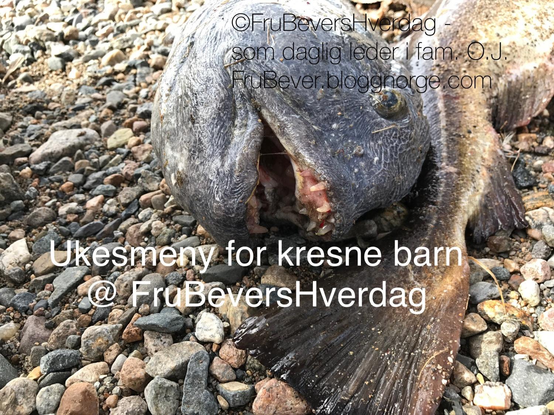 Ukesmeny for kresne barn @ FruBever // middagstips!