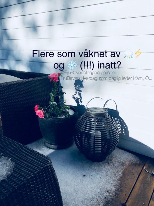 Snø // hagel i august ❄️