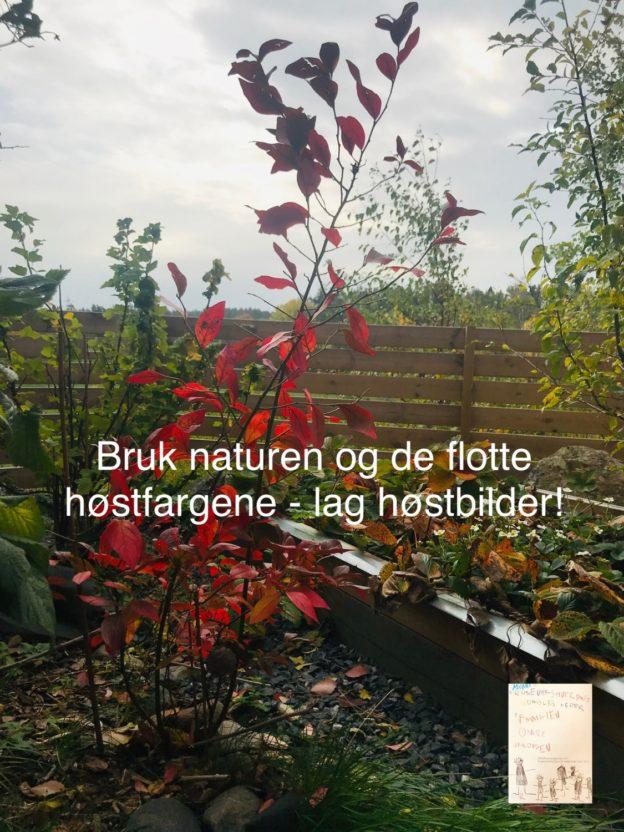 DIY: Høststemning // bruk naturen