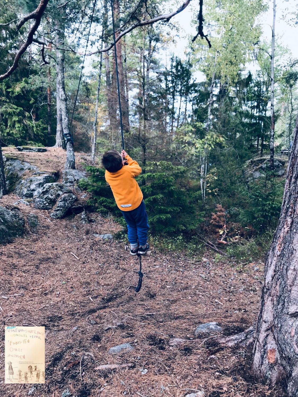 Høstferie bål og aking i skogen