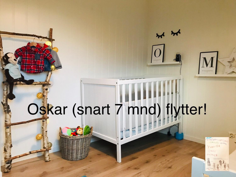 Gjestinnlegg Oskar // verden sett igjennom babys øyne