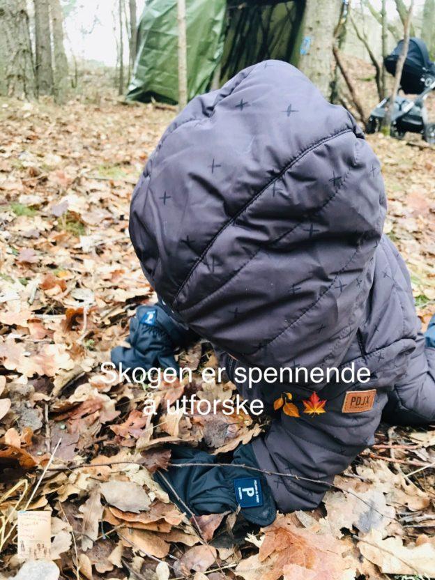 Søndagskos i gapahuken // bål // februar