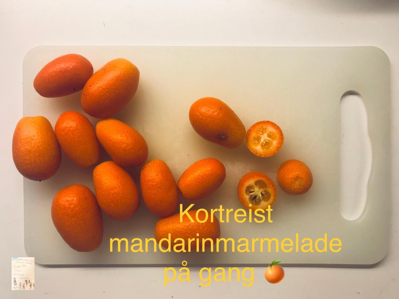 Økologisk manadarin marmelade fra Provence