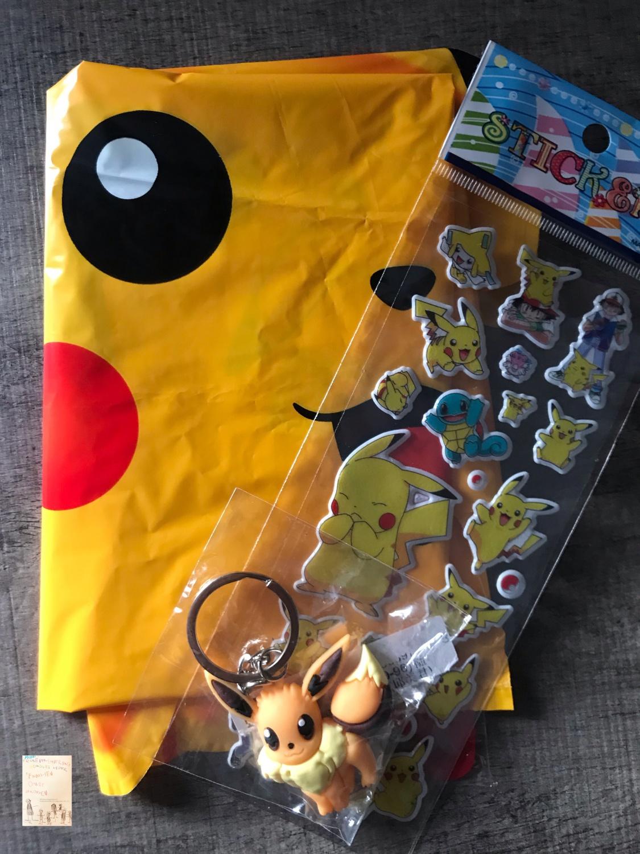Pokémon fan