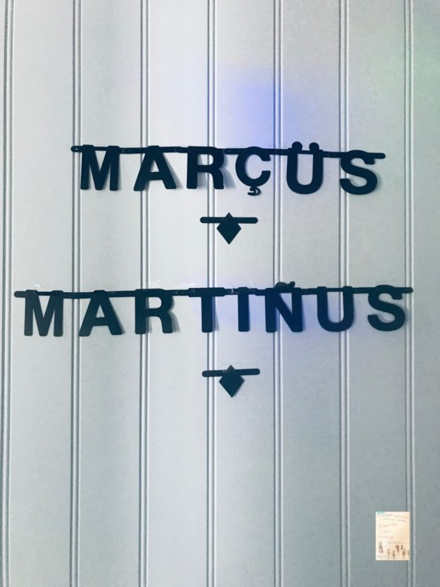 Marcus og Martinius PARTY // sommer @FruBevershverdag