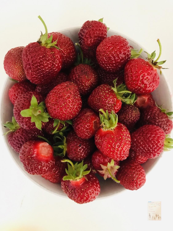 Jordbær rett fra hagen @FruBever // bær og frukthage