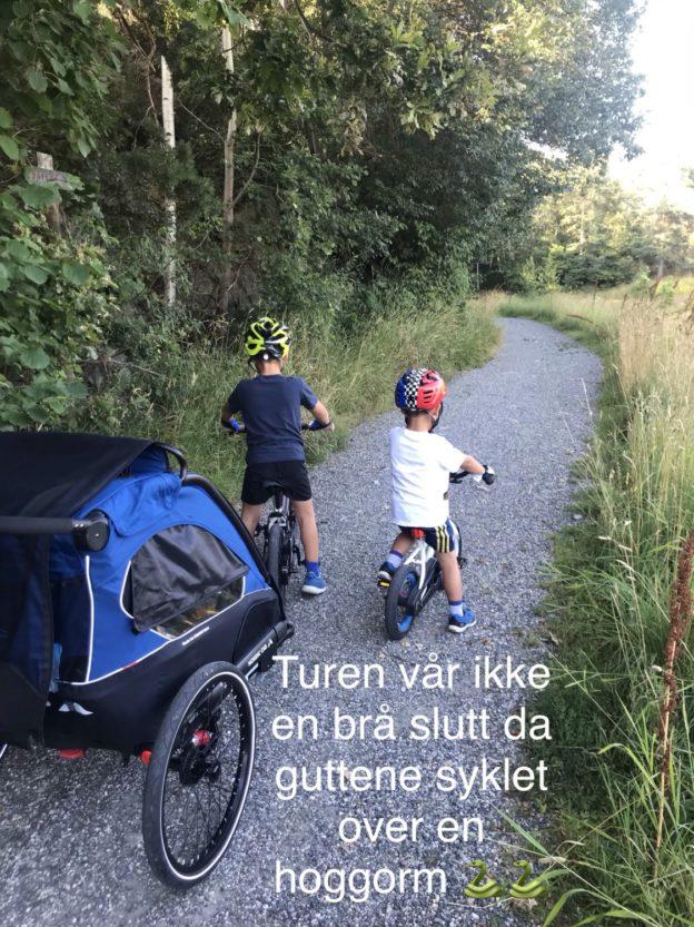 Hoggorm på sykkeltur // sommer @ the O.j.'s