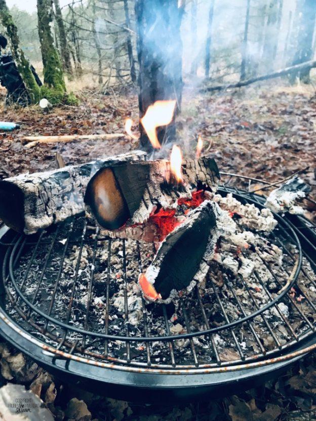 Mer romjulskos i skogen @Gapahuken vår!