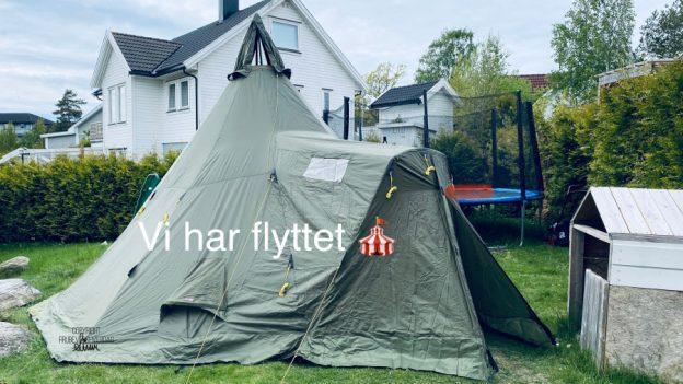 Telt vs lavo [FruBeversHverdag]
