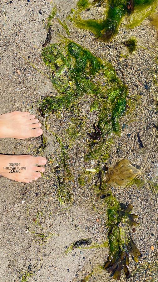 Strandlivet er helt innenfor 🏝 FruBeversHverdag