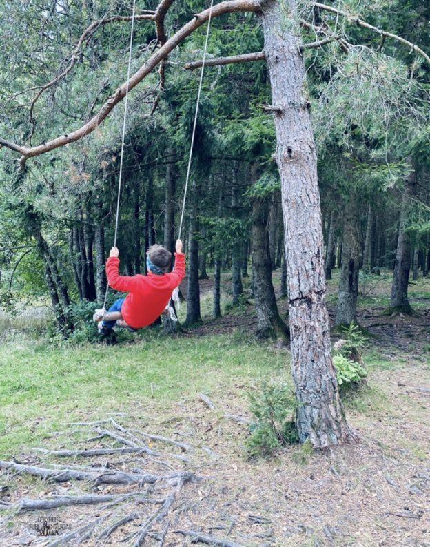 Høststemning i skogen 🍁FruBeversHverdag