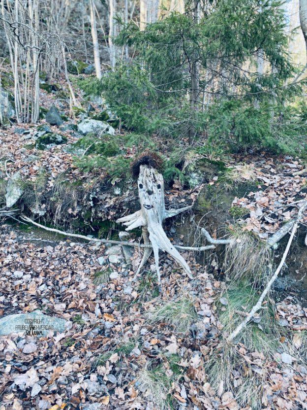 Skogens konge 🌲 [FruBeversHverdag]