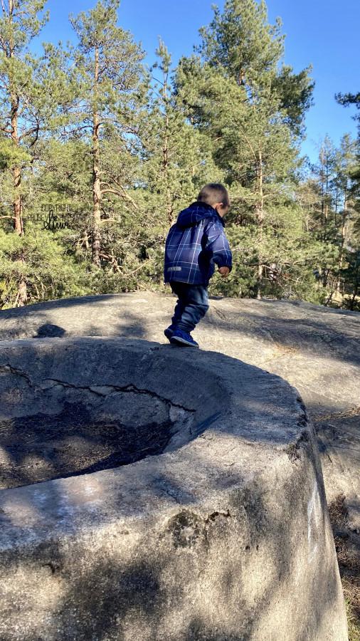 En bror trente, vi andre lekte i skogen 🌲 [FruBeversHverdag]