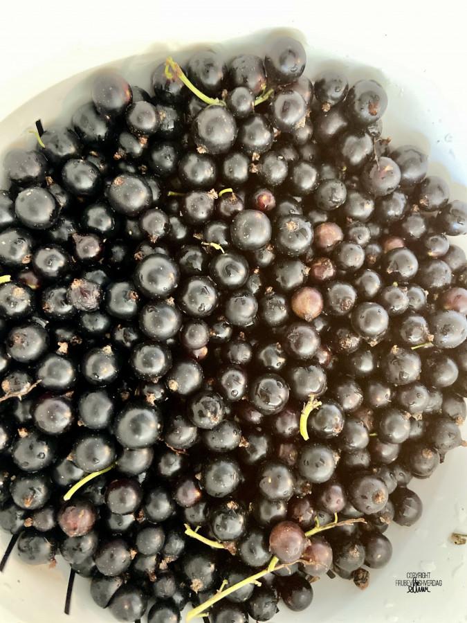 Diy solbærsaft med bær fra hagen [FruBeversHverdag]